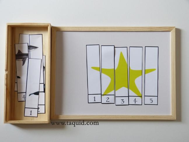 taqui_Puzzles numéricos