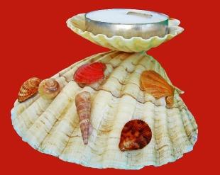 taquid férias de verão apanhar conchas e fazer um porta velas
